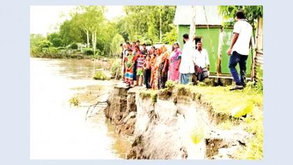 Erosion by Jamuna intensifies in Tangail