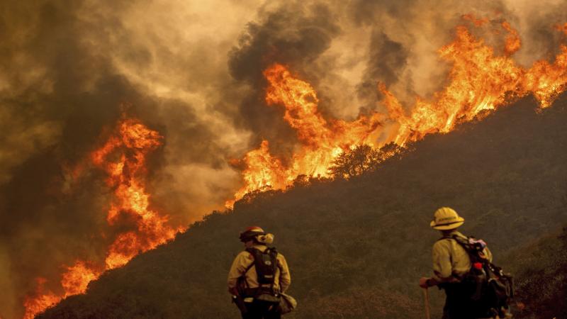 Record 2 million acres burned in California fire