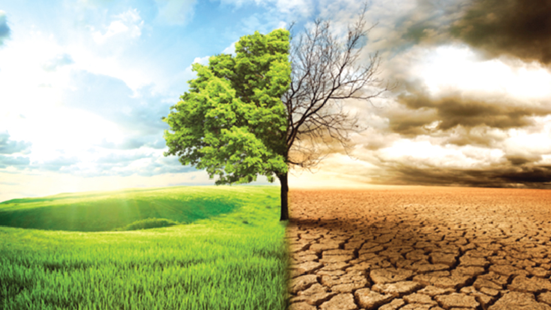 Bangladesh And Global Warming Theindependentbd Com