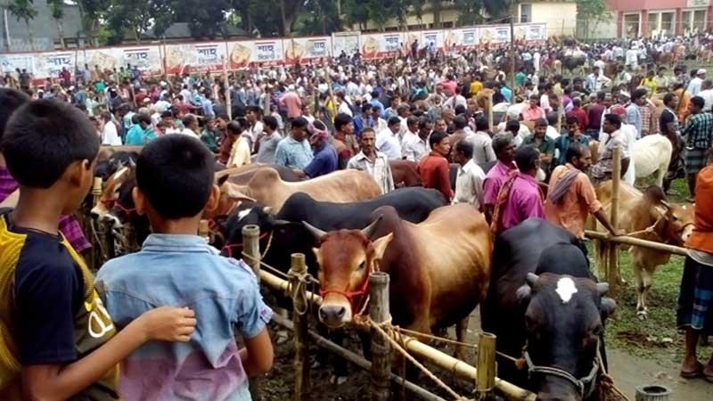 Ensure hygiene in sacrificial animal market