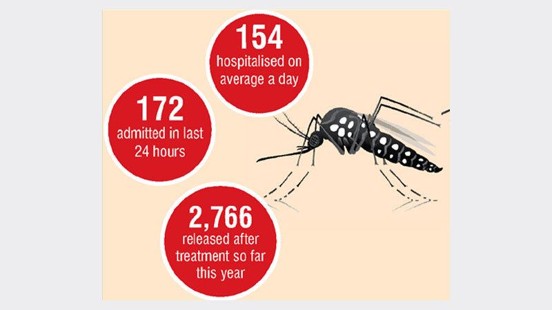 Dengue turns dangerous in Dhaka