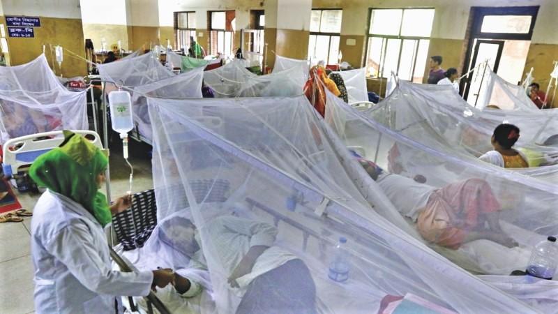 Dengue: 2 more die, 211 others hospitalised