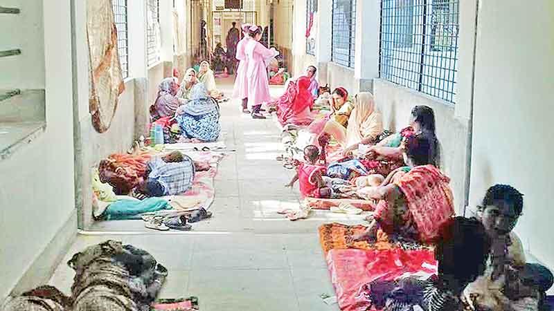 HC again slams 2 Dhaka city corpns on mosquito control