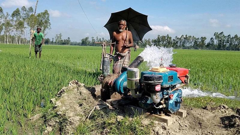 After flood, drought hits Kurigram farmers