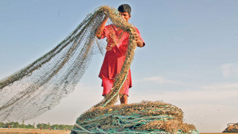 22-day ban on hilsa fishing from Oct 4