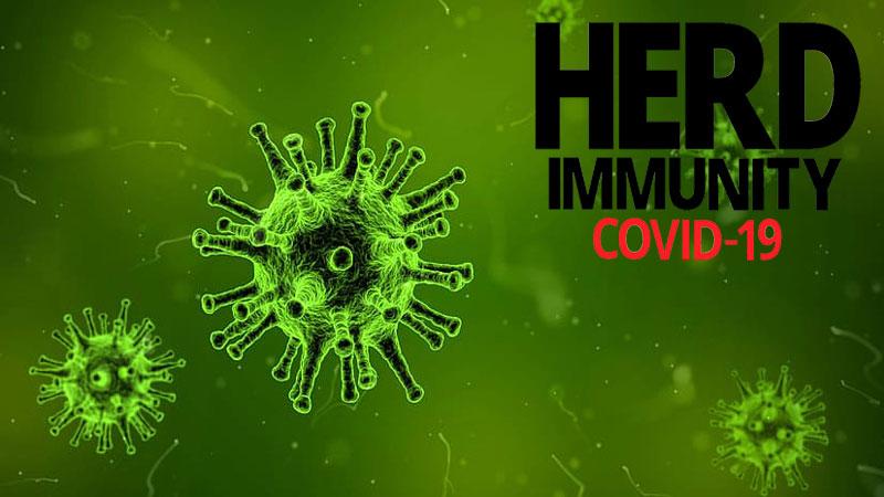 Vaccine and herd immunity: Immunity to COVID-19 may not last