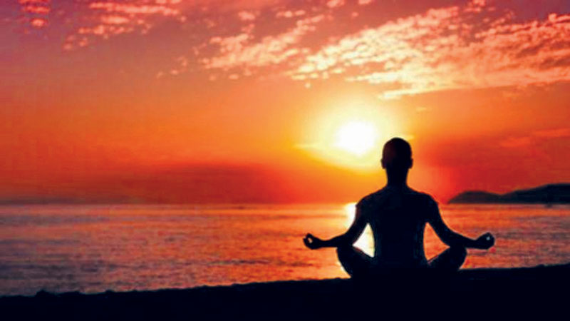 International Yoga Day and human wellbeing