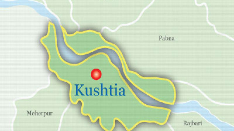 Elderly man killed by 'grandson' in Kushtia