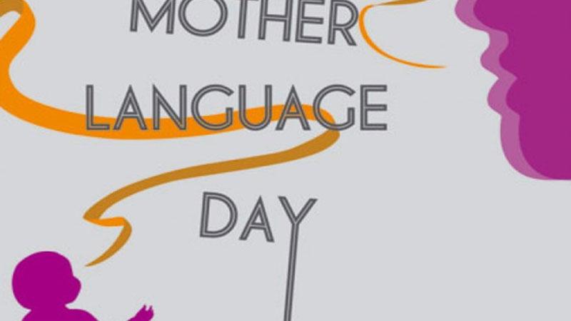 Mother language, state language, official language and national language