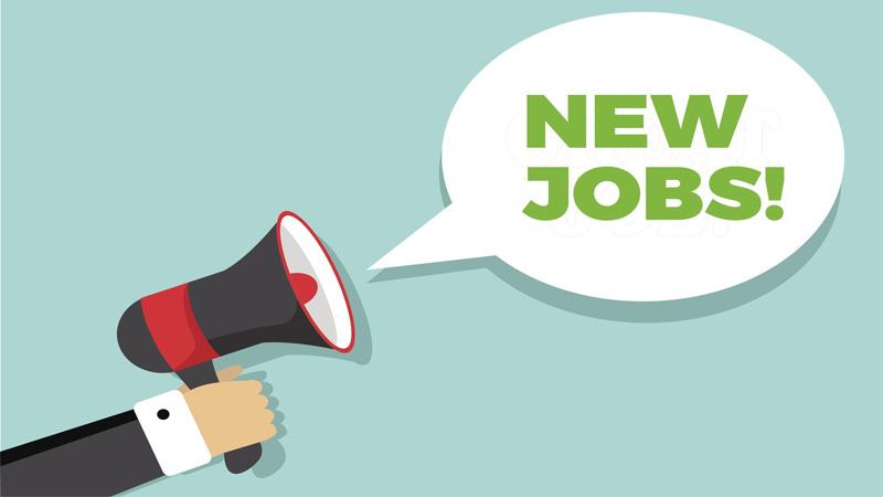 Govt to create 10m new jobs