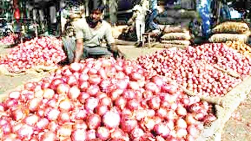 Onion price dips below Tk 200