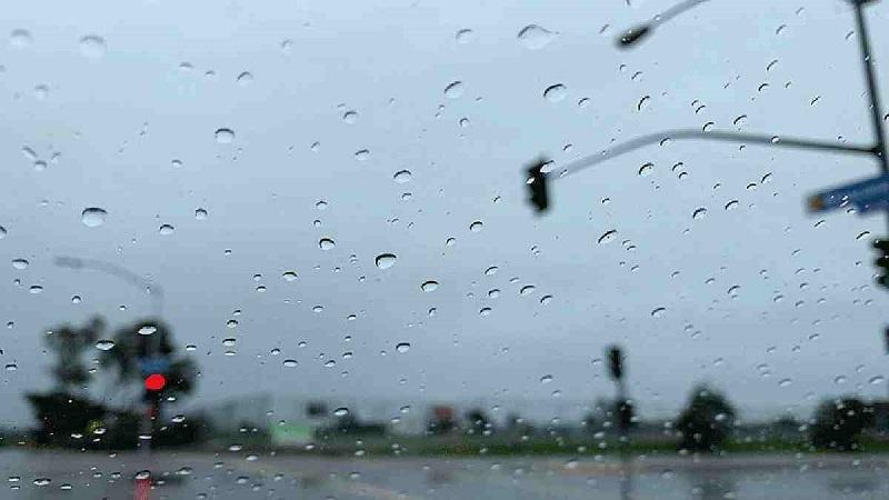 Rain, thundershowers likely: Met office
