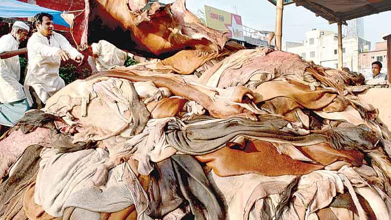 Unpaid dues of skin merchants make market vulnerable