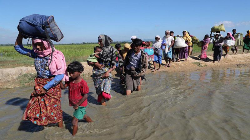 Rohingya repatriation to begin Jan 23