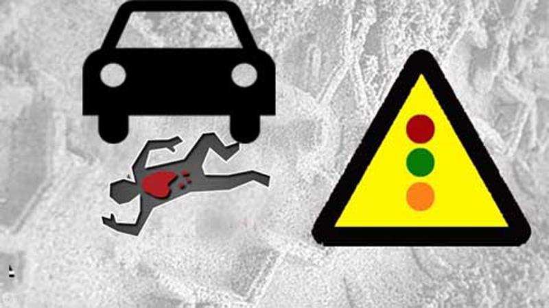 Sirajganj road crash kills journo, wife