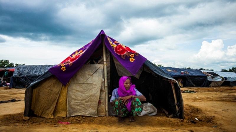 3 Nobel Laureates to visit Rohingya camps