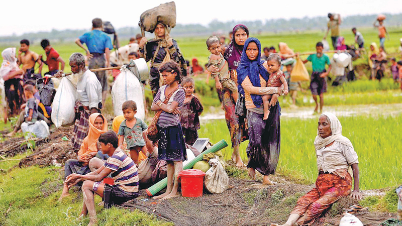 UNHCR calls for lasting solutions of Rohingya crisis