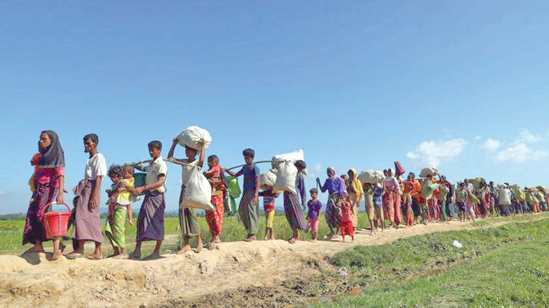 China wants execution of Rohingya repatriation deal: Envoy