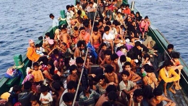 Govts must assist Rohingyas stranded at sea: Amnesty International