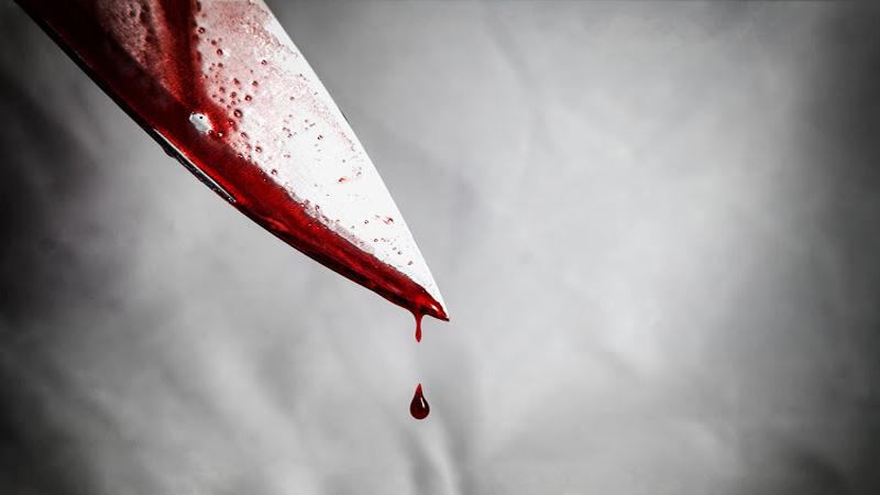 Son 'kills' mother, grandmother in Jhenaidah