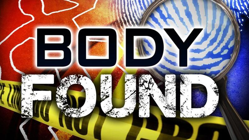 3 bullet-hit bodies found in N'ganj