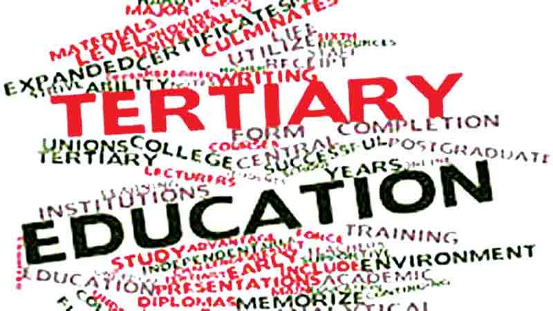 Tertiary education needs to be purposeful