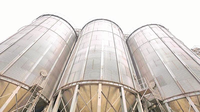Govt to build 200 paddy silos to ensure fair price: Majumder