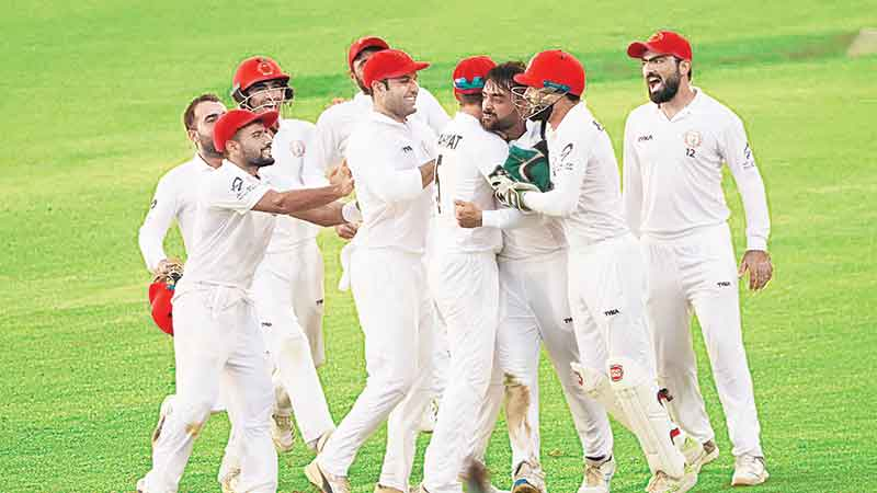 Tigers surrender as Afghan spin rules