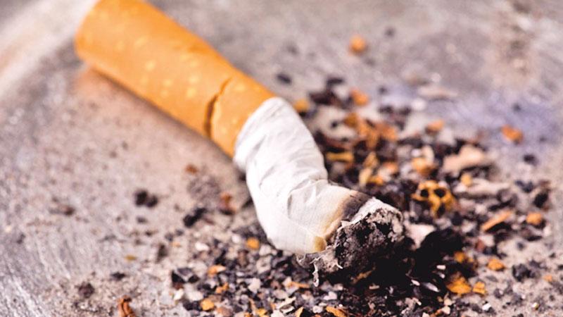 Tobacco kills millions, wreaks environmental havoc