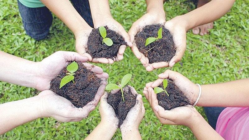 10 years of selfless tree planting