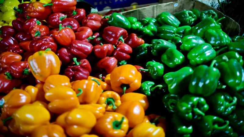 'Mediterranean' diet may boost IVF chances: study