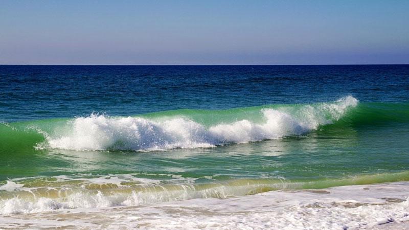 Ocean water with zero oxygen quadrupled in volume in past 50 years