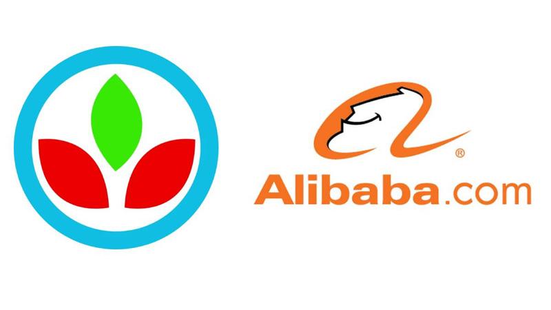 Alibaba opens doors to Bangladeshi SMEs for mega B2B sourcing event