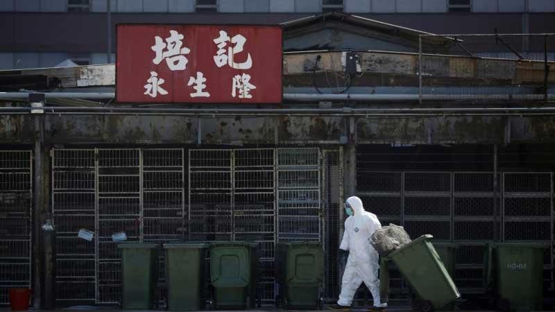 Hong Kong scientists claim 'broad-spectrum' antiviral breakthrough