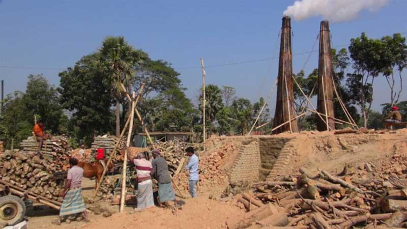 Illegal brick kilns in Faridpur, Magura fuel cropland destruction