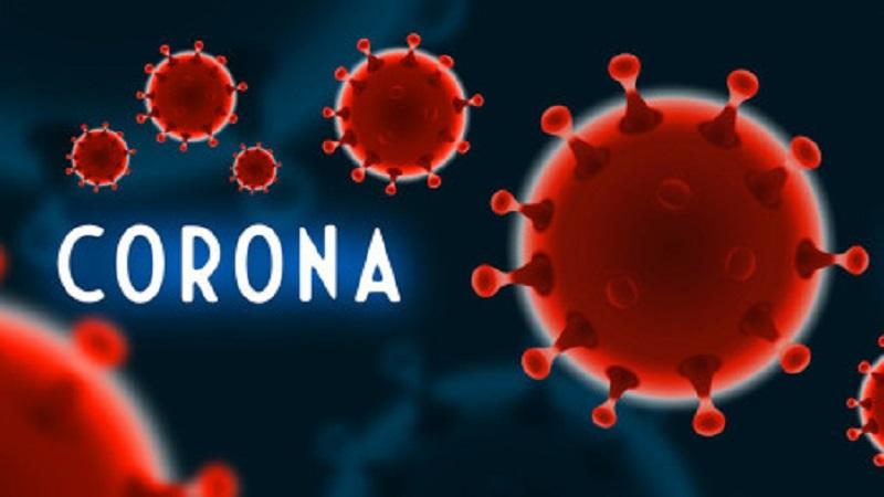 India coronavirus cases top 6 million