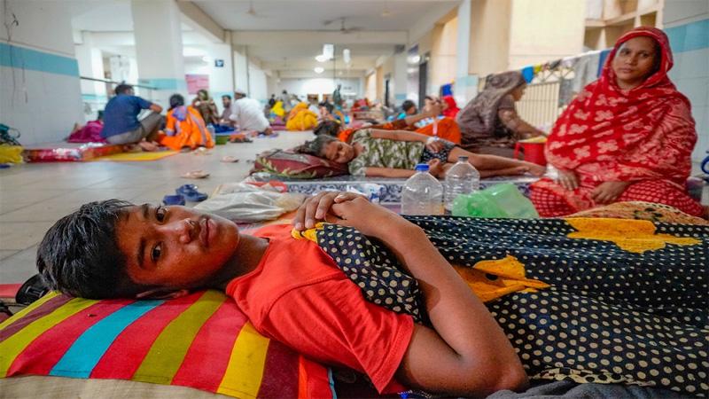 BNP blames govt's lack of accountability for dengue outbreak