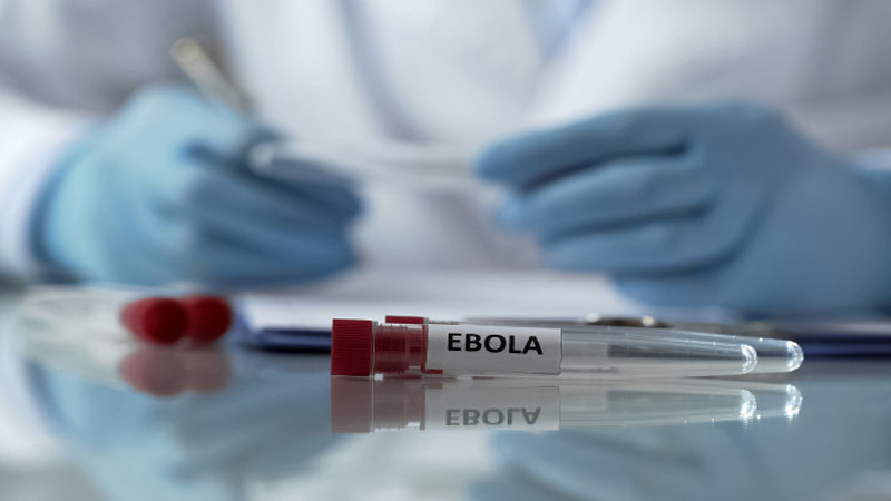 Uganda begins largest trial of experimental Ebola vaccine