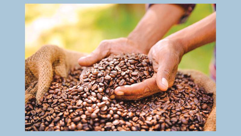 In fluke experiment, espresso quells rare genetic disease