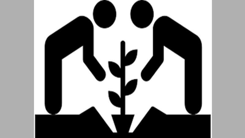 Benefits of a community vegetables garden