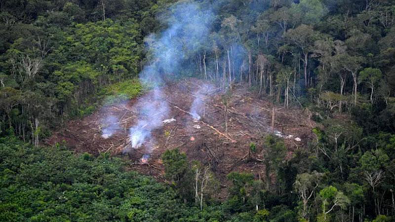 Environmental degradation poses triple threat to humans: UN
