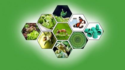 Bio-pesticide for safe food production stressed