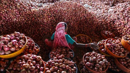Iran considering onion export to Bangladesh