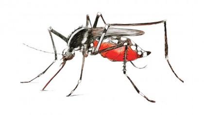 Woman dies of dengue in Satkhira