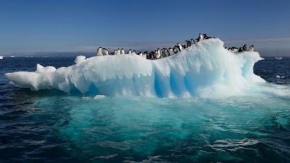 Antarctic sea ice in dizzying decline since 2014: study