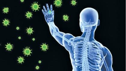 The body's immune system