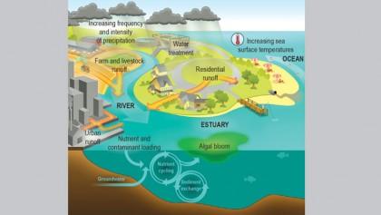 Is COP 25 reducing global temperature?