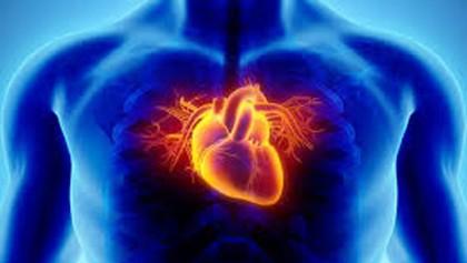 Artificial trans-fats increase risks of heart diseases, say experts