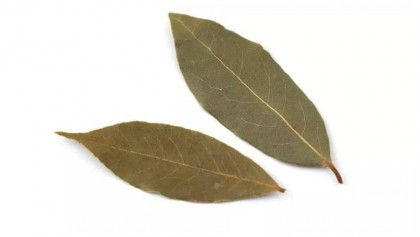 Health benefits of tej patta or bay leaf
