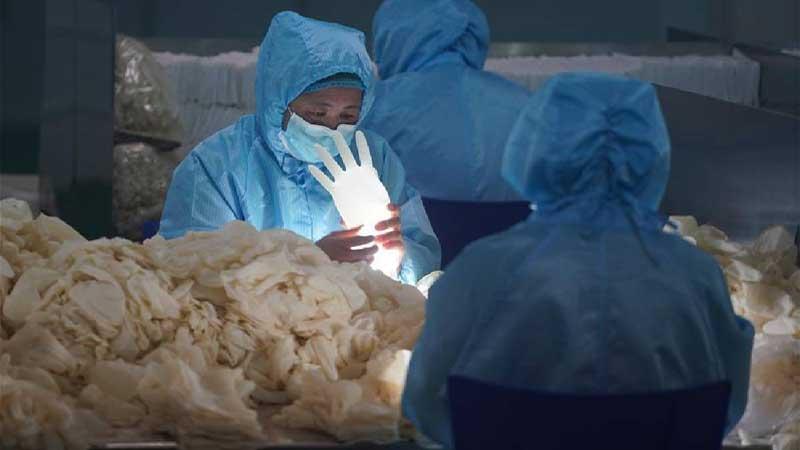 A world race against coronavirus